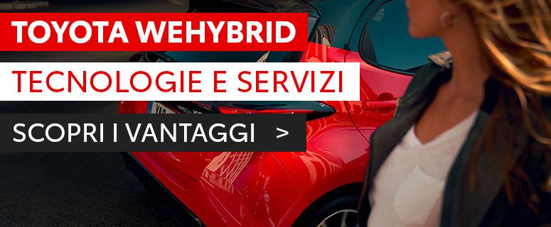 WeHybrid